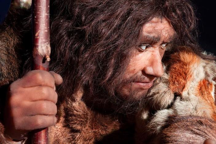 Did you that Neanderthals had impressively good dental hygiene?